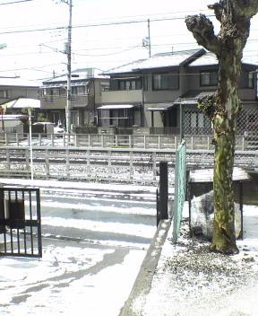 image/kin-2006-04-25T13:18:42-1.jpg